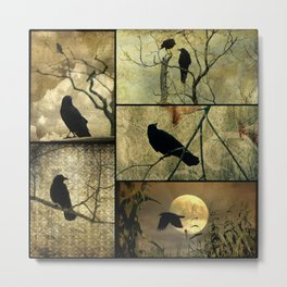 Aged Crow Collage Metal Print