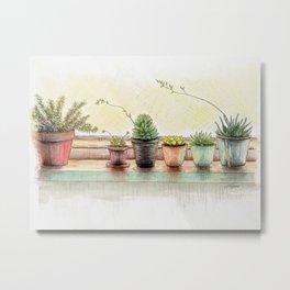 Succulents on a Window Sill Metal Print