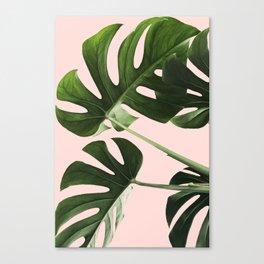 Monstera x Pink Canvas Print