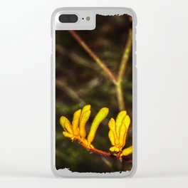 Yellow Kangaroo Paw flower against a blurred background Clear iPhone Case
