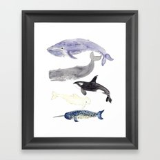 WHALES Framed Art Print