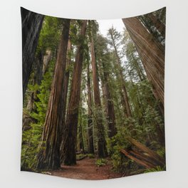 Redwood Forest Adventure VII - Nature Photography Wall Tapestry