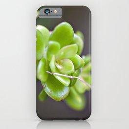 Natur ART  iPhone Case