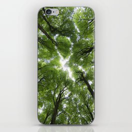 Beechwood iPhone Skin