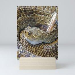 Rattle Snake Mini Art Print