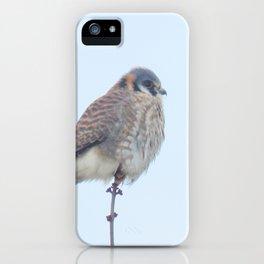 Female Kestrel (Sparrowhawk) 15 iPhone Case