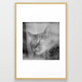 My Boy Framed Art Print