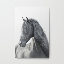 Wild Stallion - Black Friesian Horse Metal Print
