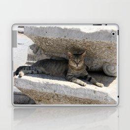 Guardian Of The Ruins Laptop & iPad Skin