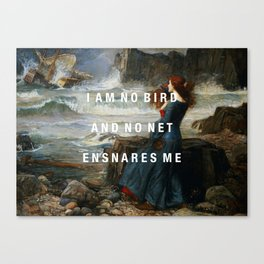 I am no bird Canvas Print