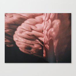In My Head Canvas Print
