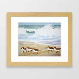 Sandpipers at Emerald Isle Framed Art Print