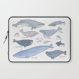 Whales Dolphins & Porpoises Laptop Sleeve