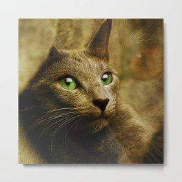 Fantastic cute Cat - Gold Background Metal Print