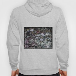 Other Land Hoody