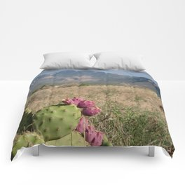 Where Desert Meets Mountains Comforters