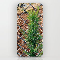Fence iPhone Skin