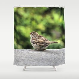 Little Feather Tasting Shower Curtain