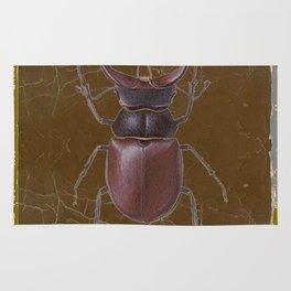 ANTIQUE STAG-HORNED BEETLE BROWN ART Rug