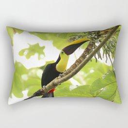Swainson Toucan Rectangular Pillow