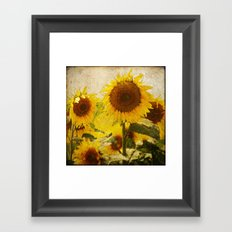 Kansas Framed Art Print