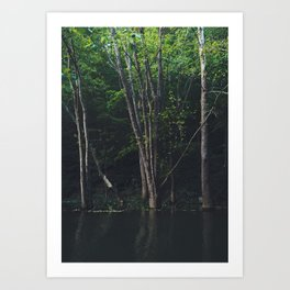High Water in the Woods Art Print