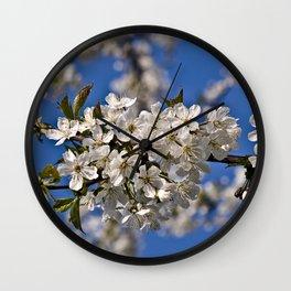 Magic White Cherry Blossom Dream Wall Clock