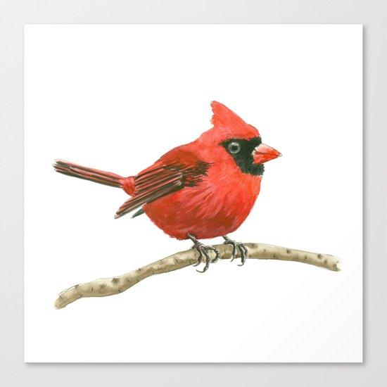 Cardinal bird Canvas Print