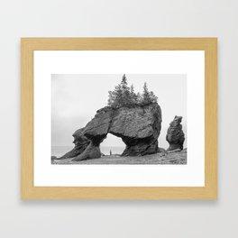 Hopewell Rocks at Low Tide Framed Art Print