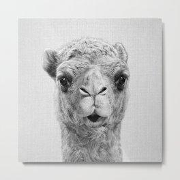 Camel - Black & White Metal Print