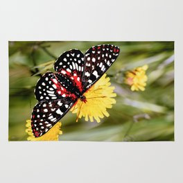 A Red Dotted Checkerspot Rug