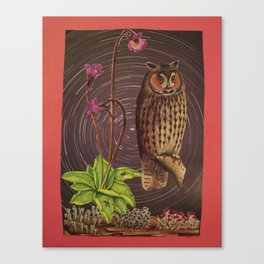 Owlicity Canvas Print