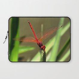 Beautiful Firecracker Dragonfly Laptop Sleeve