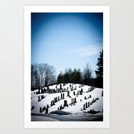 i see skies of blue Art Print