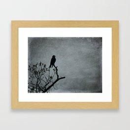 Majestic Crow Framed Art Print