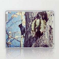 Baby Woodpecker  Laptop & iPad Skin