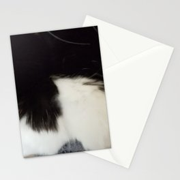 Kitten paws Stationery Cards