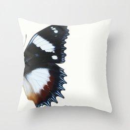 Madagascan Diadem Butterfly Throw Pillow
