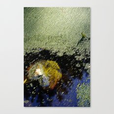 Yellow leaf in the water Canvas Print