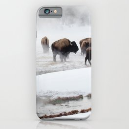 Yellowstone National Park - Bison Herd iPhone Case