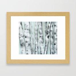 Birch trees in winter Framed Art Print