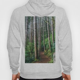 Trees: III // Oregon Hoody