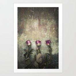 Three dried Roses Art Print