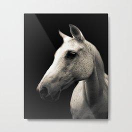Cheyenne Metal Print