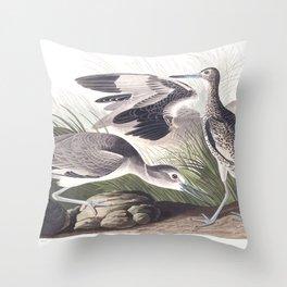 Semipalmated snipe, Birds of America, Audubon Plate 274 Throw Pillow