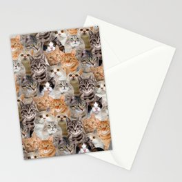 cats pattern lot of funny animals cheesy crazy Stationery Cards