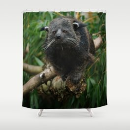Binturong Shower Curtain