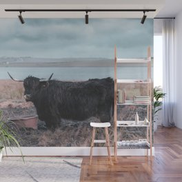 Vintage photography - Highland Cow, Thurso, Scotland Wall Mural
