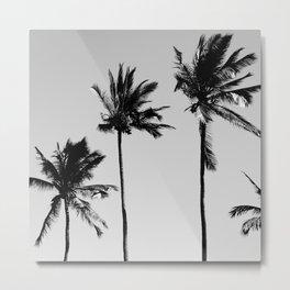 cocotier noir Metal Print