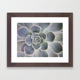 Succulent Leaf Close Up Photography | Plant | Cactus | Botanical Framed Art Print